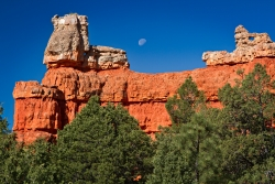 Red Canyon With Moon